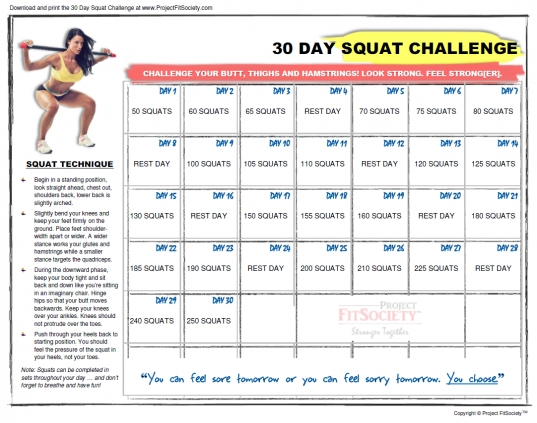 30 Day Squat Challenge   Project Fitsociety™