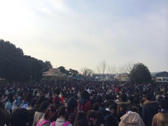 Golden Week At Tokyo Disney Resort | Tdr Explorer