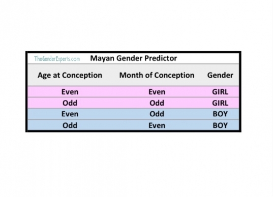 Mayan Gender Predictor Chart   The Gender Experts
