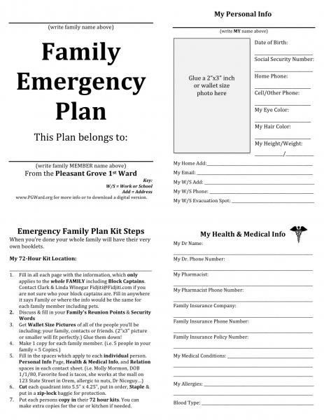 Nice Best Birth Plan Template Inspiration   Documentation Template