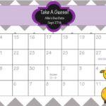 Baby Pool Calendar Editable