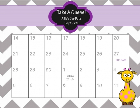 Ba Pool Template Printable   Google Search | Ba Calendar
