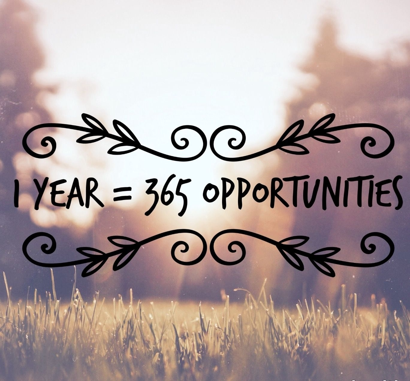 1 Year = 365 Opportunities