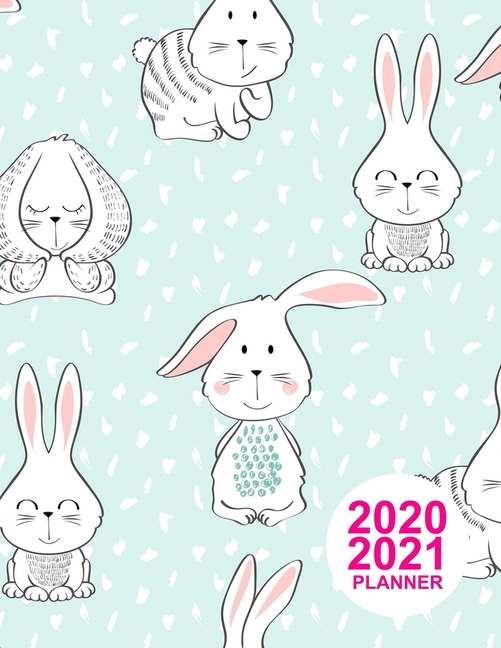 2020 2021 Planner: Pretty Two Year Monthly Planner