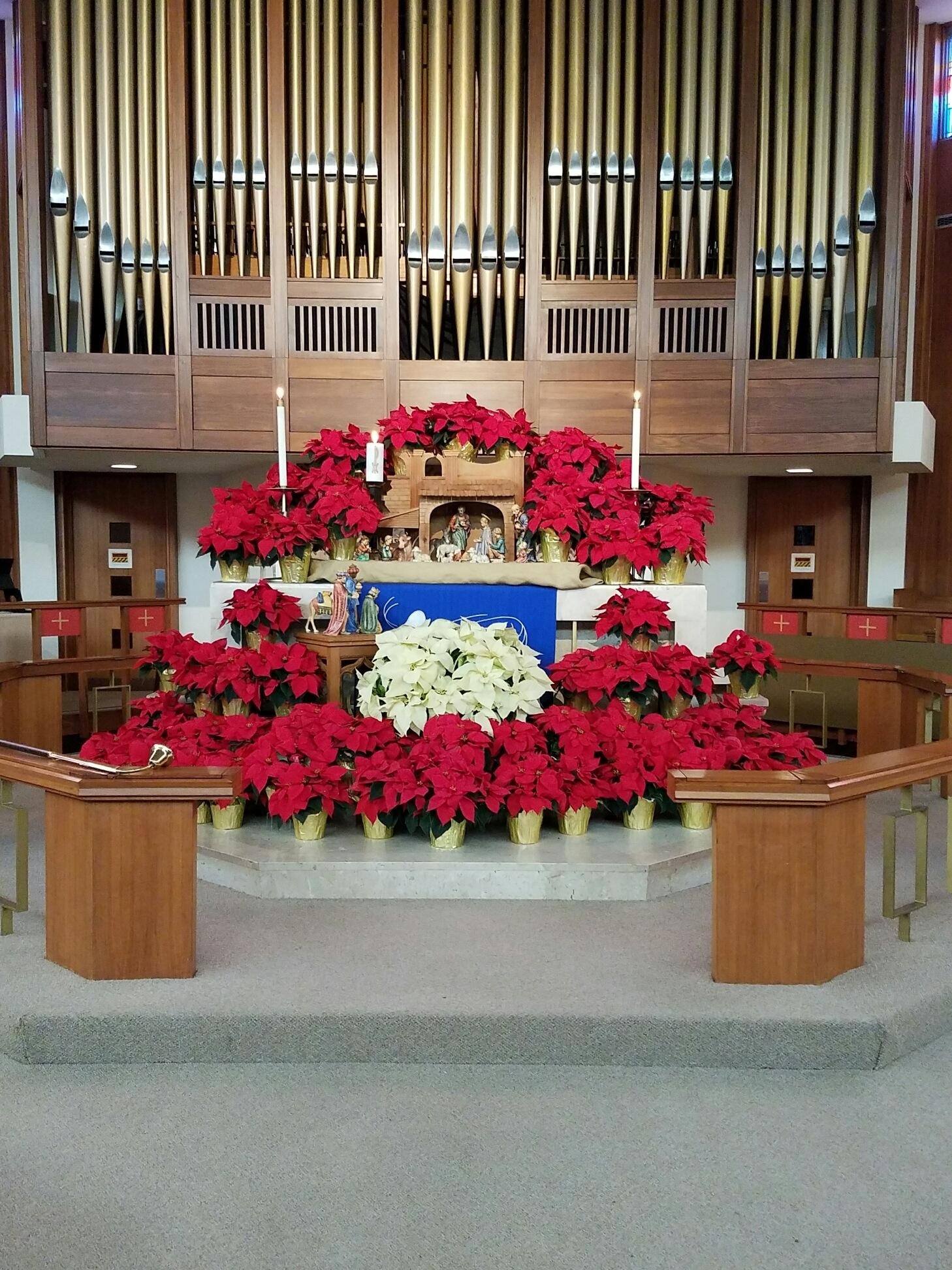 Christmas Altar   North Pointe United Methodist Church