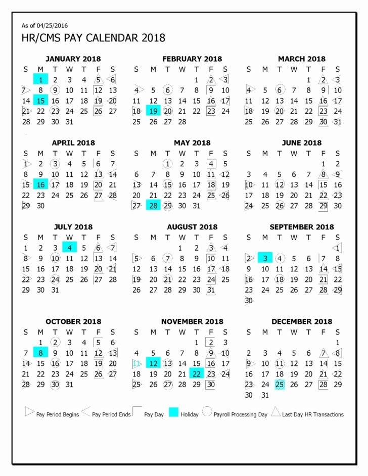Hhs Payroll Calendar 2021 | Payroll Calendar 2021