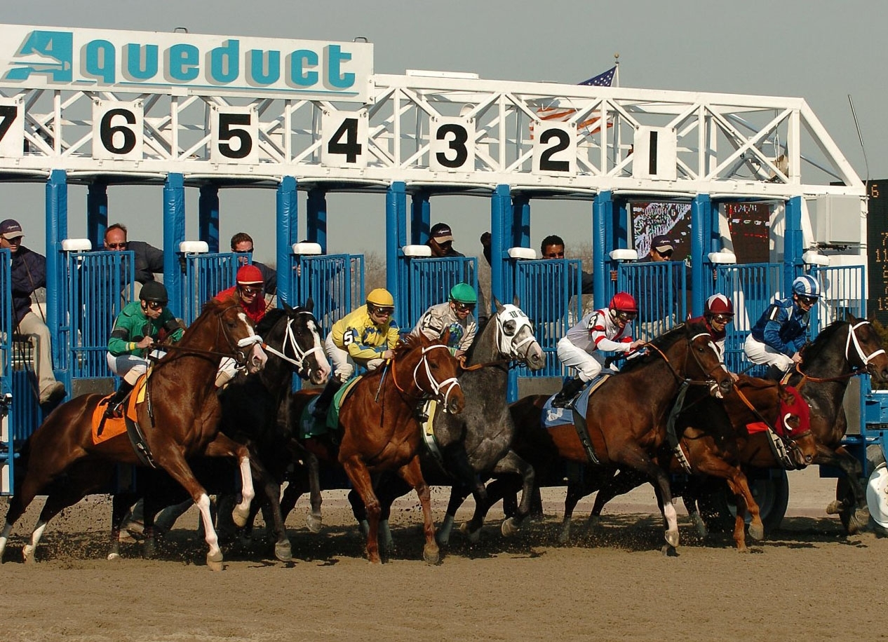 Nyra Releases Aqueduct Stakes Schedule
