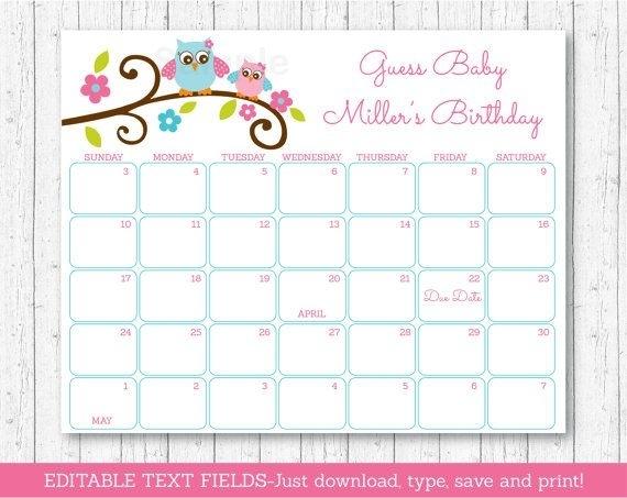 Owl Baby Due Date Calendar / Owl Baby Shower / Pink Owl