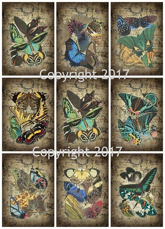 Printed Vintage Seguy Butterflies Collage Sheet #107 8.5 X