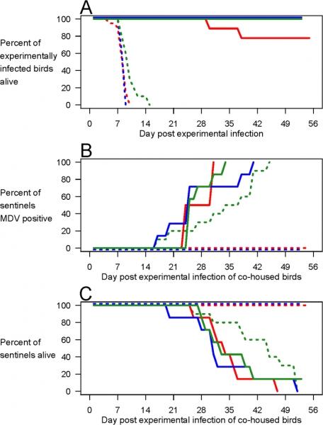 Vaccination Enhances Transmission Of Hyperpathogenic Mdv