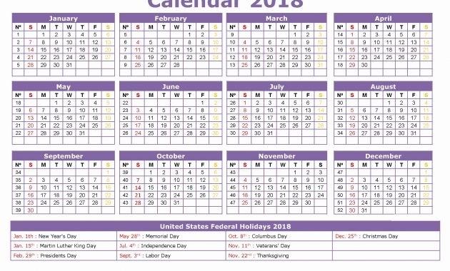 Multi-Dose Vial 28 Day Expiration Calculator 2021 | Printable Calendar Template 2020
