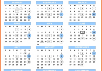 2020 Federal Pay Period Calendar Printable - Template Calendar Design