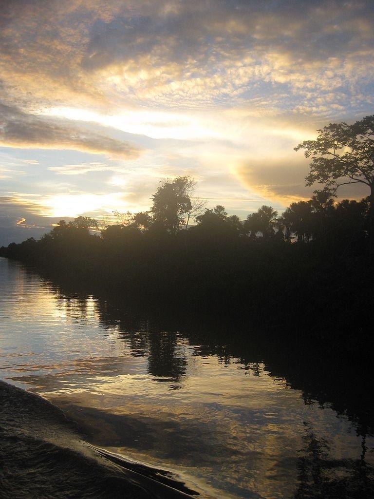File:the Amazon River, Brazil (6924539944) - Wikimedia Commons